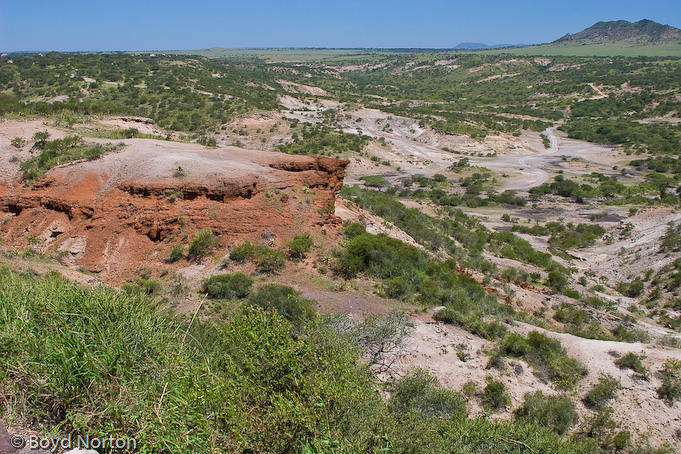 La gola di Olduvai (Tanzania)