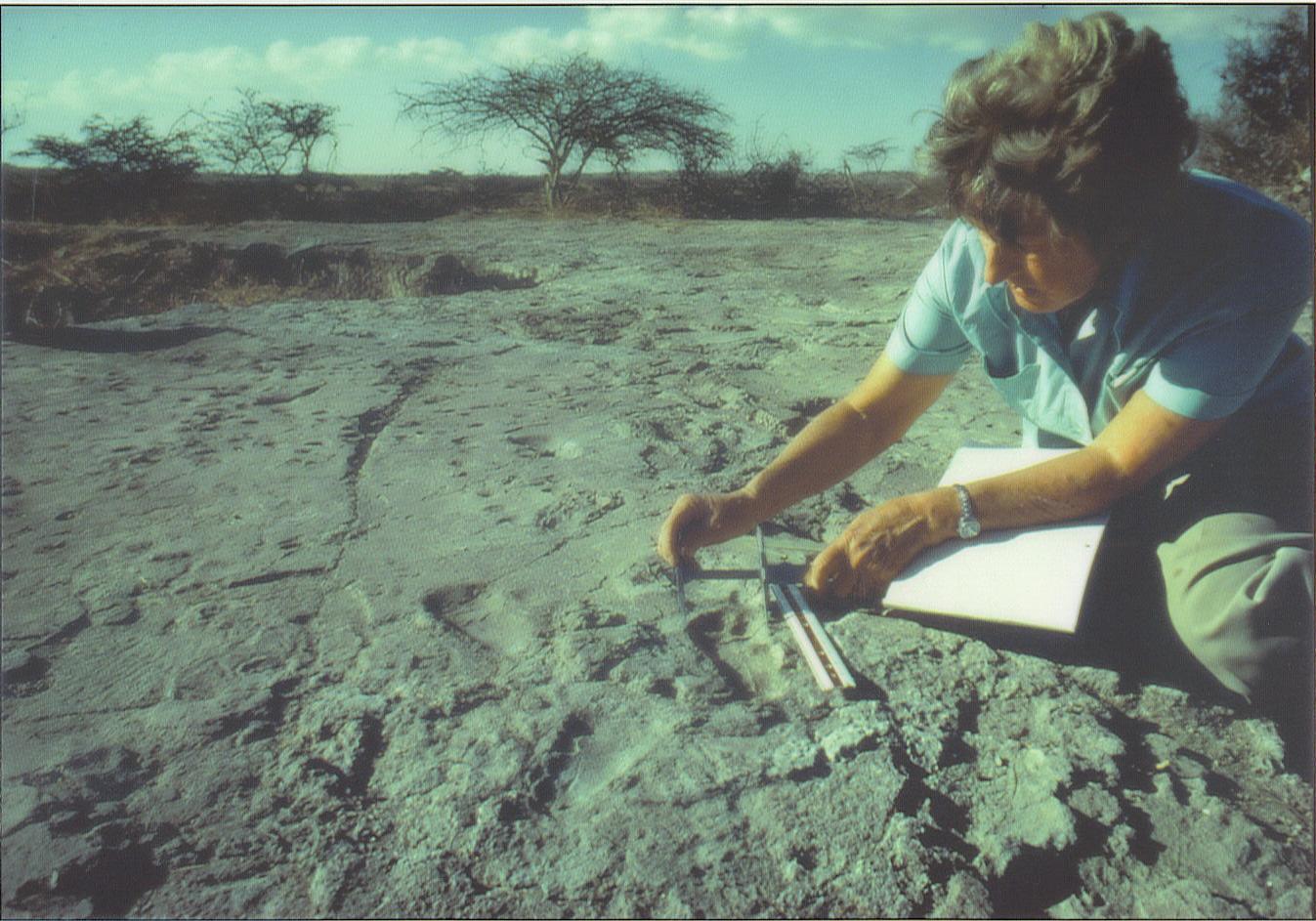 La paleontologa Mary Leakey al lavoro nel sito di Laetoli in Tanzania