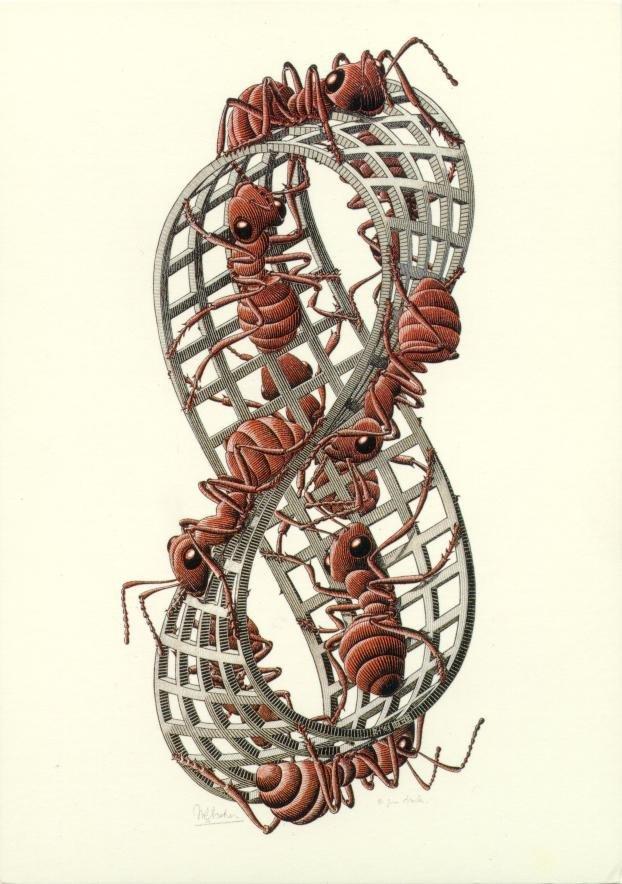 Un famoso disegno di Mauritius Cornelius Escher, Anello di Möbius II, 1963, con la processione senza fine delle formiche sulla superficie dell'anello.
